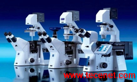 Axio Observer倒置显微镜