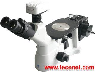 倒置金相显微镜XD30M