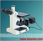 XJL-17系列倒置金相显微镜