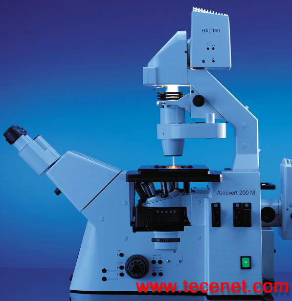 德国蔡司倒置生物显微镜