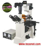 FM-50型     研究型荧光显微镜