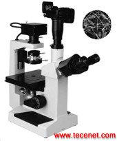 PHM-60系列     倒置相衬显微镜