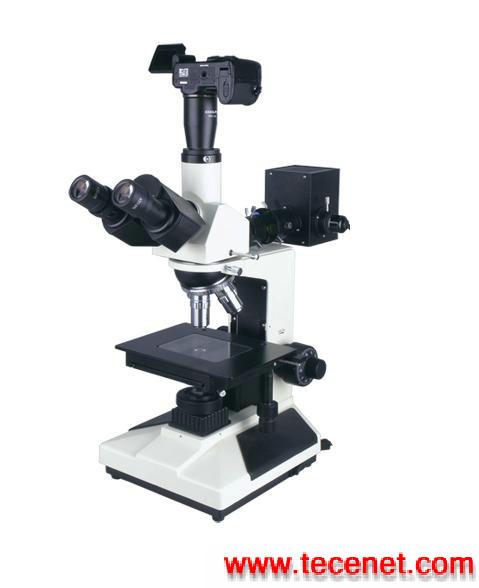 正置显微镜
