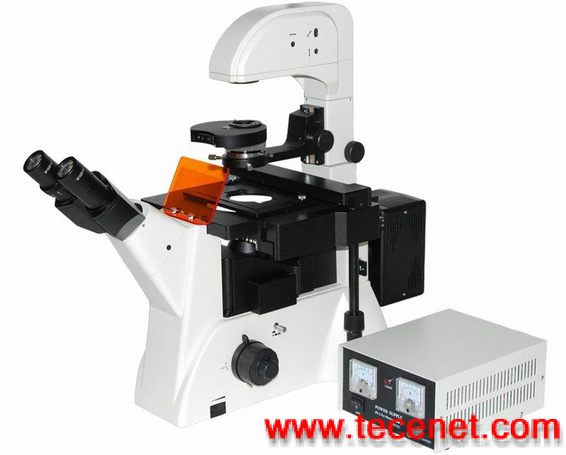 供应厦门显微镜