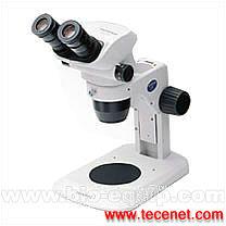 OLYMPUS 体视显微镜