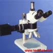 山东青岛正置三目金相显微镜53XB