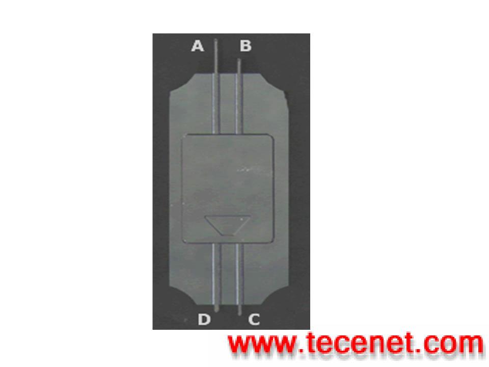 北京五泽坤公司--四悬臂原子力显微镜探针