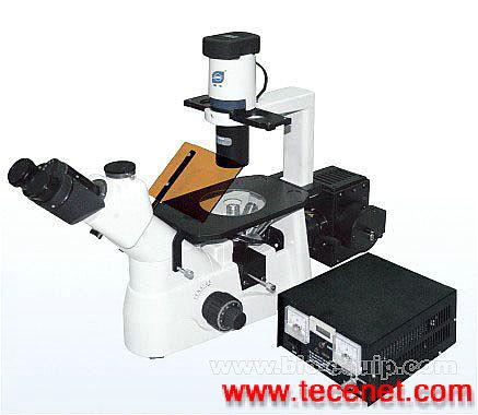 正置 倒置 荧光显微镜
