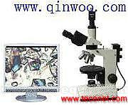 数码偏光显微镜QA35