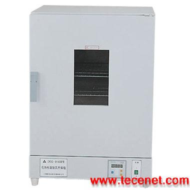电热鼓风干燥箱/电热鼓风烘箱/恒温干燥箱