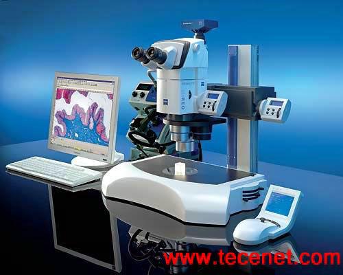 电动连续变焦体视显微镜