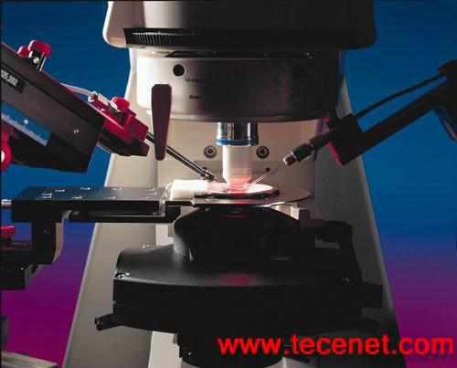 电生理研究专用显微镜
