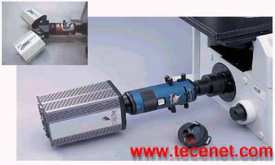 荧光共振能量转移检测