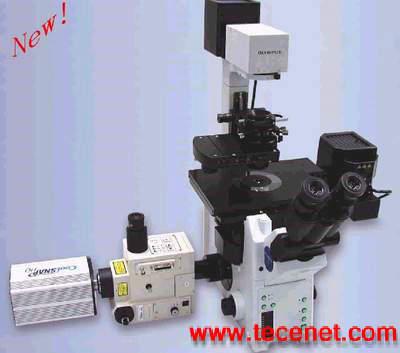 高速共焦显微镜