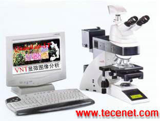 Quantlab-ST显微图像分析系统