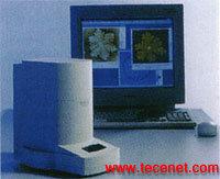 扫描隧道电子显微镜