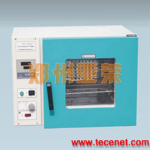 电热恒温鼓风干燥箱,鼓风干燥箱生产商