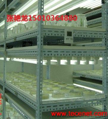 植物培养架(组培架) 北京专业生产