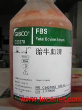 Gibco C2027050乌拉圭胎牛血清FBS