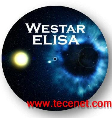 原装进口-Elisa试剂盒-ELISA化学发光底物