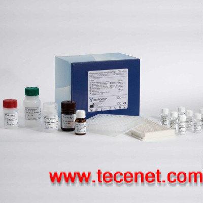 小鼠内皮素1(ET-1)ELISA试剂盒