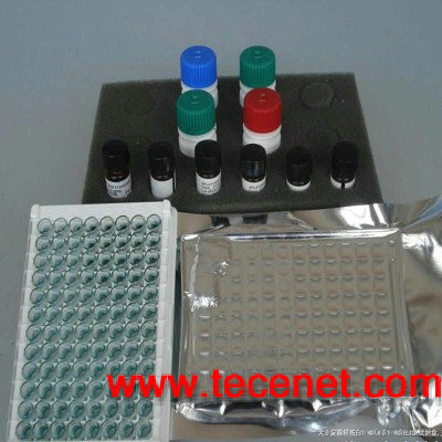 人胃蛋白酶(Pepsin)ELISA试剂盒