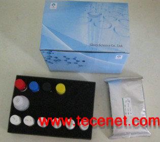 青霉素检测试剂卡