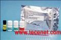 玉米赤霉烯酮试剂盒NEOGEN8110检测毒素
