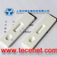 喹诺酮类胶体金速测卡(快速检测卡/试纸)