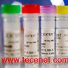 重组艾滋(HIV)抗原 P24 GP41 GP36 GP120等