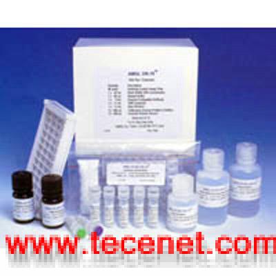 人血管生长素(ANG)ELISA试剂盒