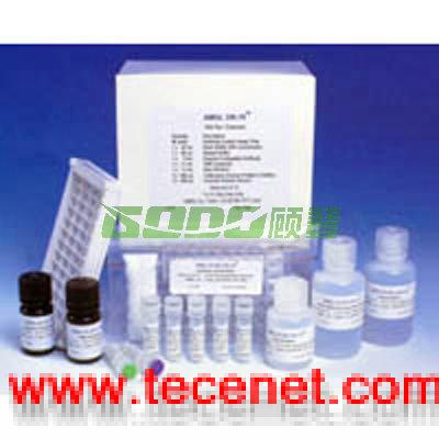 人6-羟多巴胺ELISA试剂盒