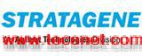 Stratagene货号210518,QuikChange上海雅裕