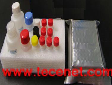 大鼠血管生成素2(ANG-2)ELISA试剂盒