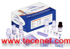 大鼠脂联素(ADP)ELISA试剂盒