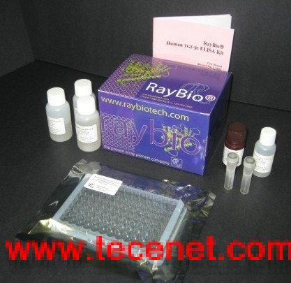 人表皮生长因子ELISA试剂盒