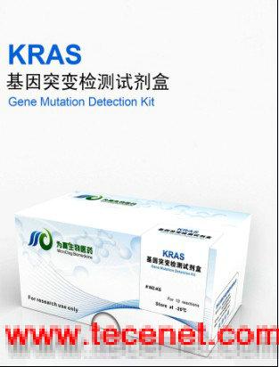 K-RAS基因突变检测试剂盒