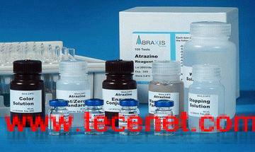 人泛素蛋白(Ub)定量检测试剂盒(ELISA)