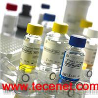 多酚氧化酶;酪氨酸酶