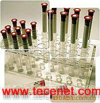 黄曲霉毒素B1免疫亲和层析柱