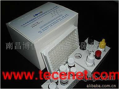 黄曲霉毒素B1 ELISA快速检测试剂盒