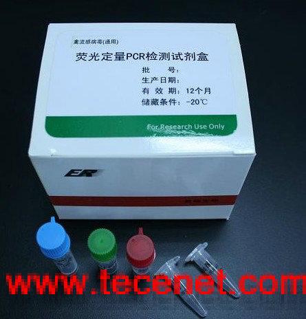 实时荧光定量PCR病毒致病菌检测试剂盒