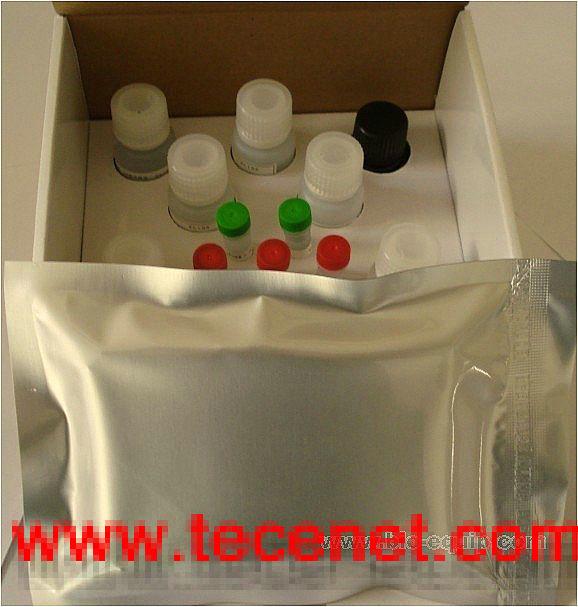 ELISA试剂盒