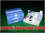 军团菌(Lp)抗原检测ELISA试剂盒