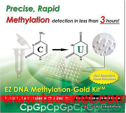 EZ DNA甲基化试剂盒-Gold