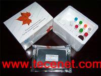 食品安全检测试剂系列产品